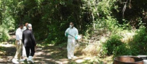 Anzio, ritrovato nel bosco di Lavinio un corpo fatto a pezzi.