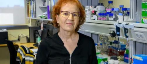 Margarita del Val cree que al virus le queda lo peor