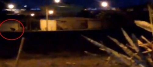 Vídeo de internauta flagra suposto lobisomem caminhando sobre as ruas de Ceilândia.