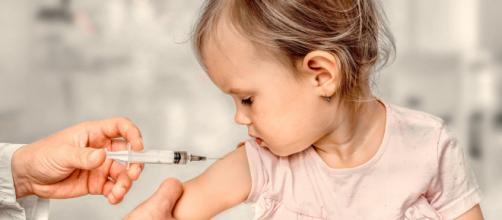 Todavía no se están probando vacunas en niños.