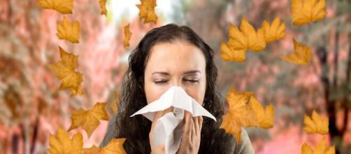 Existen algunos alimentos que pueden prevenir las alergias