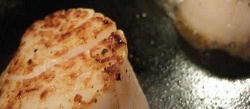 Scallops searing [Source: Retsu.com - Flickr]