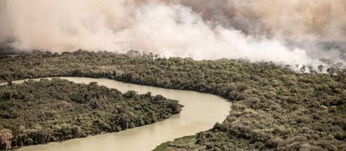 Desmatamento da floresta amazônica. (Arquivo Blasting News)