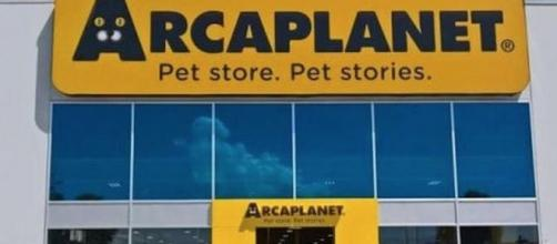 Arcaplanet assunzioni: cerca addetti vendita nei pet store.
