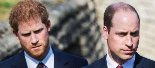 Prince Harry and Prince William Respond to Claims That Their ... - vanityfair.com