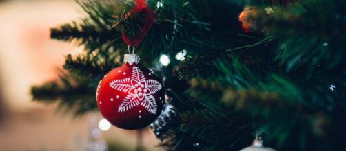 La vente des sapins de Noël est autorisée. Credit: freestocks
