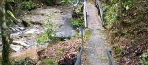 Mulher encontrada morta em centro de João de Deus sobreviveu a Fukushima, diz polícia. (Divulgação/Polícia Civil)