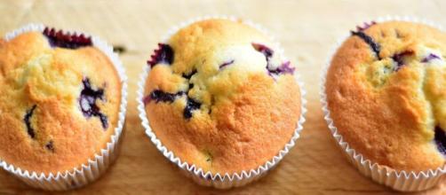 Muffins [Source: congerdesign - Pixabay]