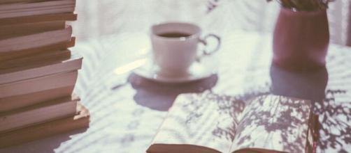 5 dicas de livros para conhecer o feminismo. (Arquivo Blasting News)