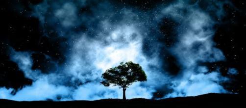 Previsioni zodiacali del 30 novembre: Capricorno e Pesci turbati, Scorpione osservatore.