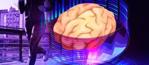 Alimentos pontuais para o cérebro funcionar melhor. (Arquivo Blasting News)