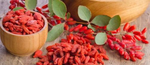 Goji es un alimento muy saludable con grandes beneficios para la salud