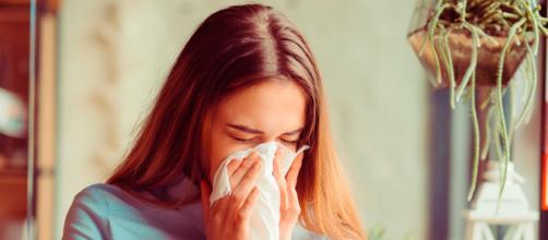 Las alergias aumentan ante la presencia de ácaros.