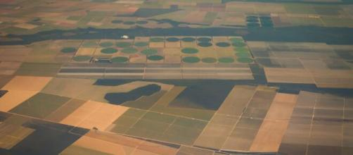 Venda de terras a estrangeiros: entenda o que diz o projeto de lei. (Arquivo Blasting News)
