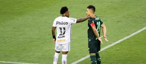 Santos e Palmeiras são os únicos representantes do futebol brasileiro na Libertadores. (Arquivo Blasting News)