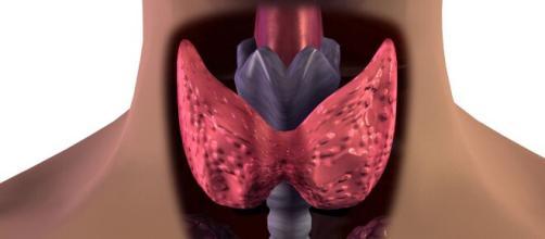 Hay malos hábitos como fumar que afectan la tiroides