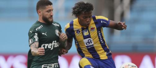 Palmeiras joga nesta quarta-feira (2) em busca da classificação. (Arquivo Blasting News)