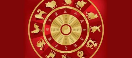 O horóscopo Chinês tem previsões através de animais. (Foto: Pexels)