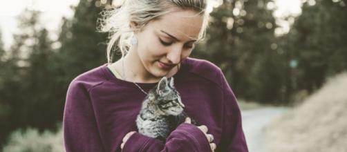 Quels sont les bienfaits d'avoir un chat à la maison ? - Photo Pexels