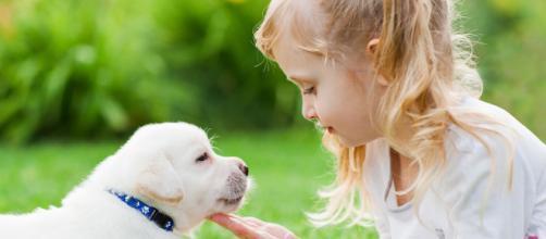 La pérdida de una mascota siempre representa un duelo, especialmente para los chicos. - 1zoom.me
