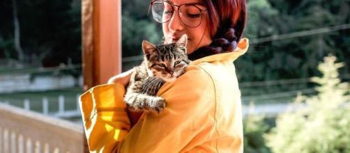 25% des français aimeraient passer la saint valentin avec leur chat