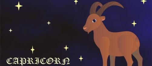 Il segno zodiacale del Capricorno