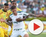 Com novo gramado sintético, Palmeiras joga contra o Mirassol no Allianz Parque. (Fonte: Blasting News)