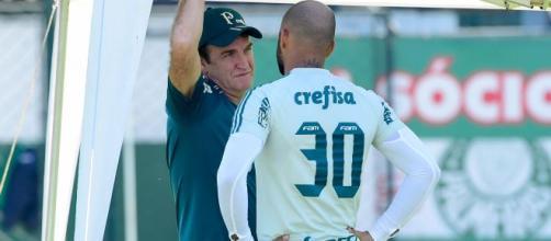 Elenco do Palmeiras não está completo para enfrentar a competição regional e time busca principalmente um atacante. (Arquivo Blasting News).