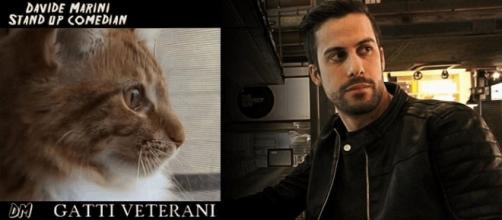 9 video di 'Gatti Veterani', la raccolta completa del comico Davide Marini