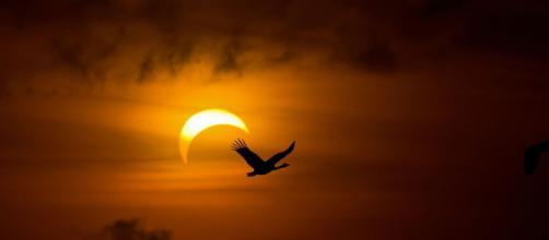Oroscopo del giorno 26 febbraio 2020 | Astrologia, classifica stelline e previsioni: segno al 'top' Bilancia