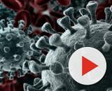 Coronavirus, sale a tre il bilancio degli infetti in Lombardia.