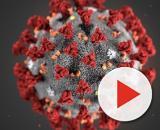 Coronavirus, l'Oms: 'Casi di contagio in Italia sono un mistero, incerti legami con la Cina'