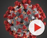 Coronavirus: l'Oms invita a ridimensiona l'allarme
