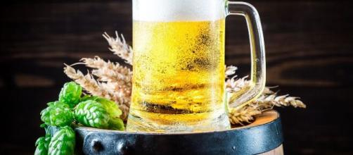 La cerveza, consumida de forma responsable, aporta múltiples beneficios a la salud