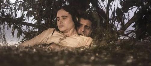 Téo e Luna se reencontram, mas o salvador estará com grave problema de saúde. (Reprodução/TV Globo)