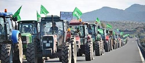 Los agricultores se manifiestan por la dignidad de su trabajo. Foto: EuropaPress