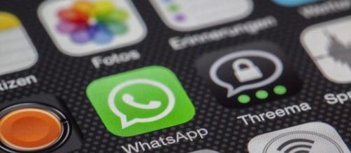 WhatsApp Pay potrebbe arrivare prossimamente anche in Italia.