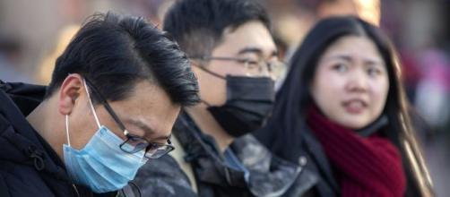 OMS apoyará a China, ante el grave brote de Cononavirus. - duna.cl