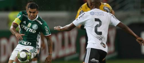Ponte e Palmeiras duelam em Campinas. (Arquivo Blasting News).