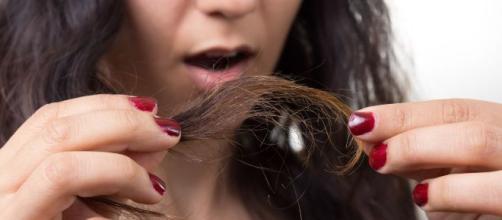 Tips caseros para reparar el pelo maltratado | Shows Entre Amigas ... - univision.com