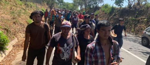 Migrantes siguen intentando arribar a EEUU, pese a endurecimiento de las políticas de Trump. - politicaya.com