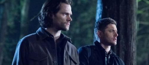 Celebridades de 'Supernatural' nos dias de hoje. (Reprodução/The CW)
