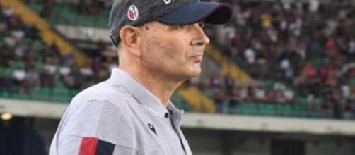 Sinisa Mihajlovic, tecnico del Bologna