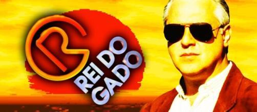 'Rei do Gado' foi uma das novelas com maior audiência da Rede Globo. (Arquivo Blasting News)