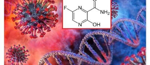 Un antinfluenzale giapponese, Favipiravir, potrebbe essere utile per un rapido recupero da SARS-CoV-2. Nella fase iniziale dell'infezione.