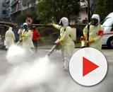 Coronavirus/China se espera un segundo brote que podría llevar a una epidemia
