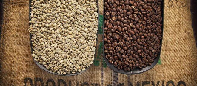La cadena de valor del café en México