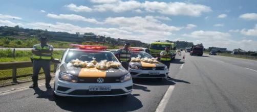 15 quilos de maconha foram encontrados pela polícia em um veículo abandonado. (Arquivo Blasting News)