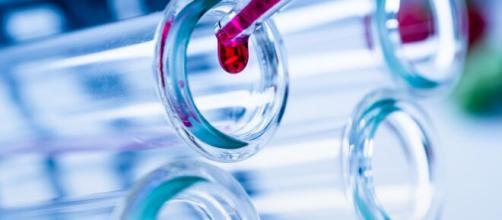 Transfusion de sangre: Posible antidoto contra el coronavirus