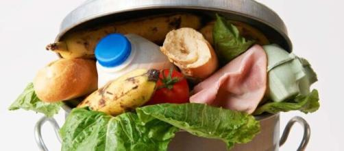 La cadena de supermercados Gerrity's Supermarket desechó productos alimenticios por la emergencia sanitaria que agobia al planeta.